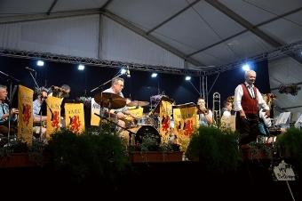 Kreisverbandsmusikfest 2015_246