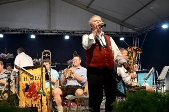 Kreisverbandsmusikfest 2015_247