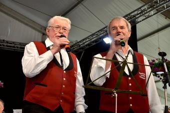 Kreisverbandsmusikfest 2015_93